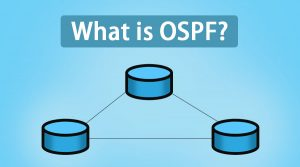 What is OSPF